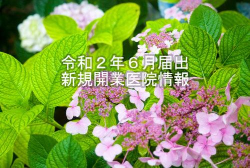 令和2年6月届出 新規開業医院情報(近畿)